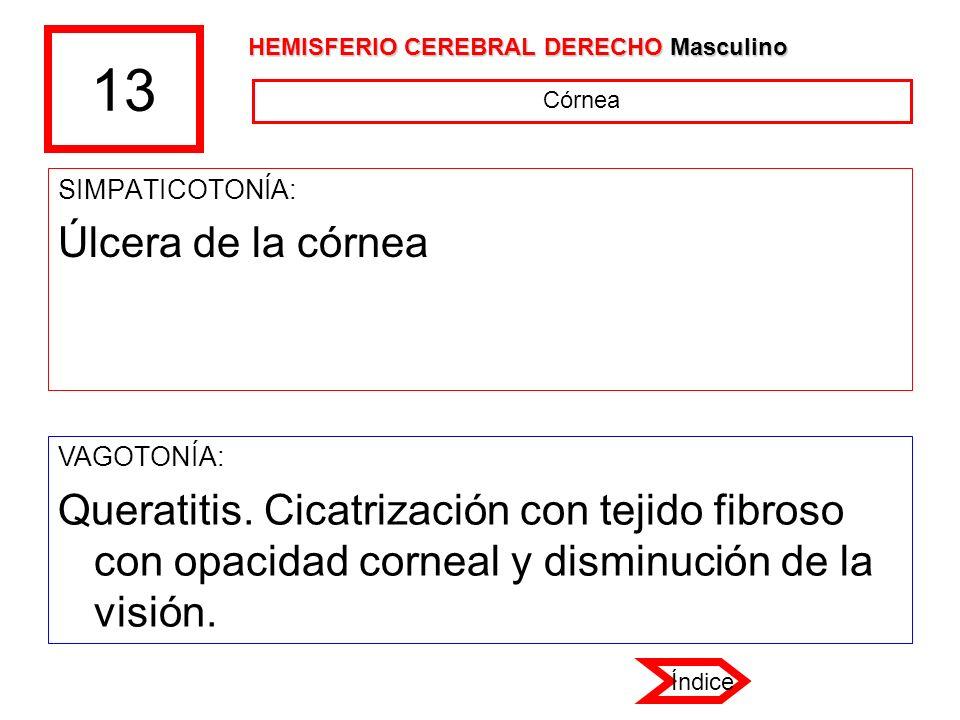 13 SIMPATICOTONÍA: Úlcera de la córnea VAGOTONÍA: Queratitis. Cicatrización con tejido fibroso con opacidad corneal y disminución de la visión. Córnea