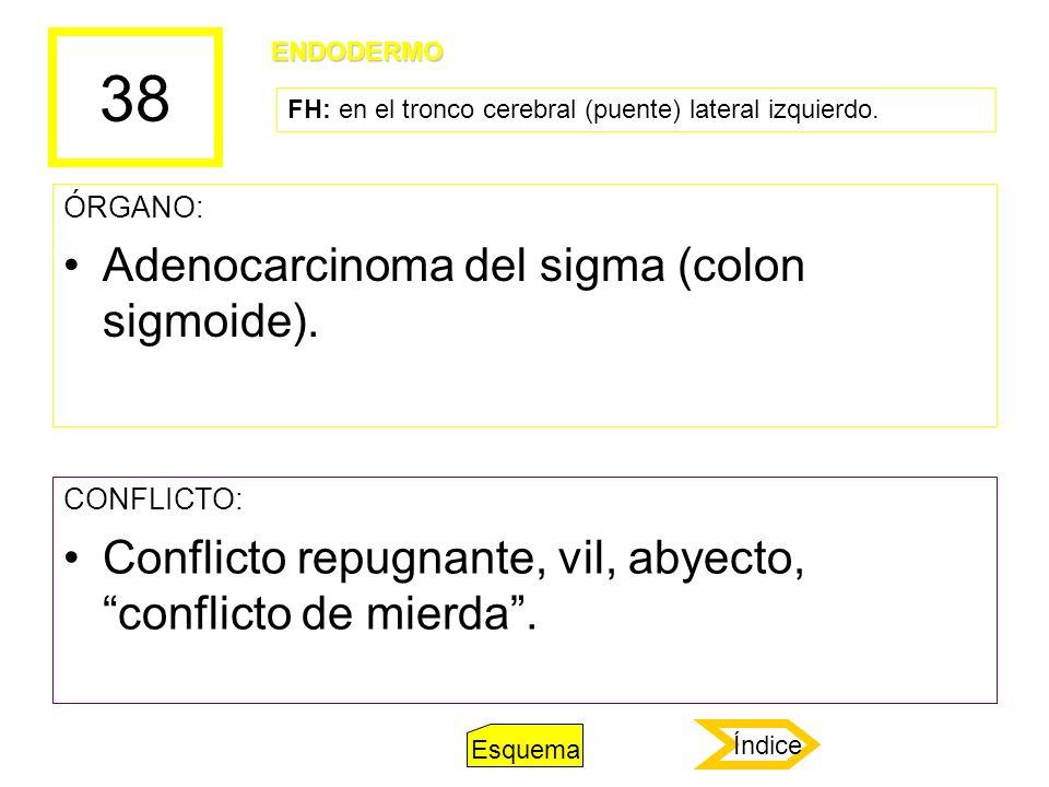 38 ÓRGANO: Adenocarcinoma del sigma (colon sigmoide). CONFLICTO: Conflicto repugnante, vil, abyecto, conflicto de mierda. ENDODERMO FH: en el tronco c