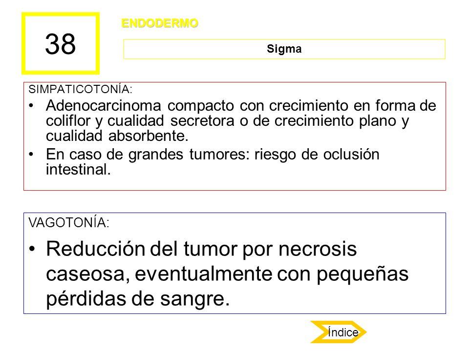 38 SIMPATICOTONÍA: Adenocarcinoma compacto con crecimiento en forma de coliflor y cualidad secretora o de crecimiento plano y cualidad absorbente. En