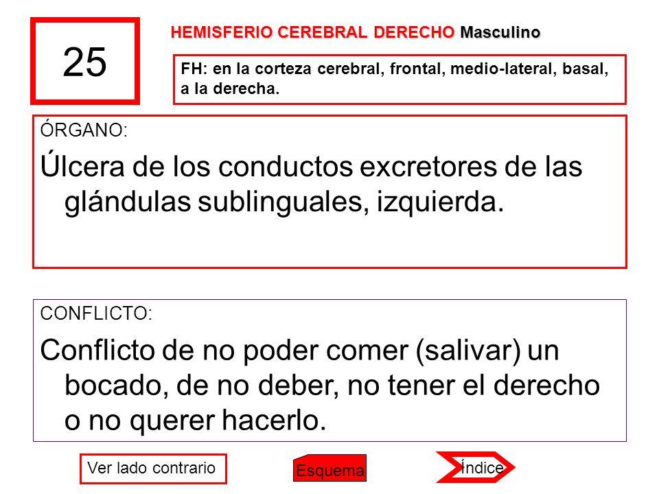 25 ÓRGANO: Úlcera de los conductos excretores de las glándulas sublinguales, izquierda. CONFLICTO: Conflicto de no poder comer (salivar) un bocado, de