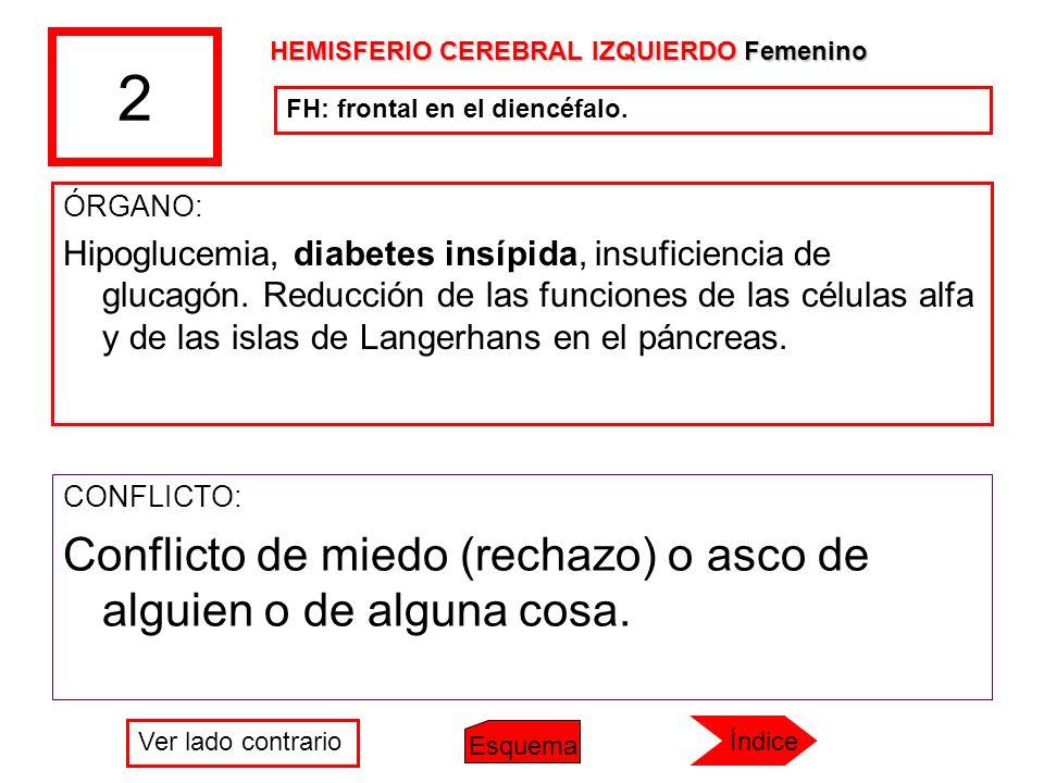 2 ÓRGANO: Hipoglucemia, diabetes insípida, insuficiencia de glucagón. Reducción de las funciones de las células alfa y de las islas de Langerhans en e