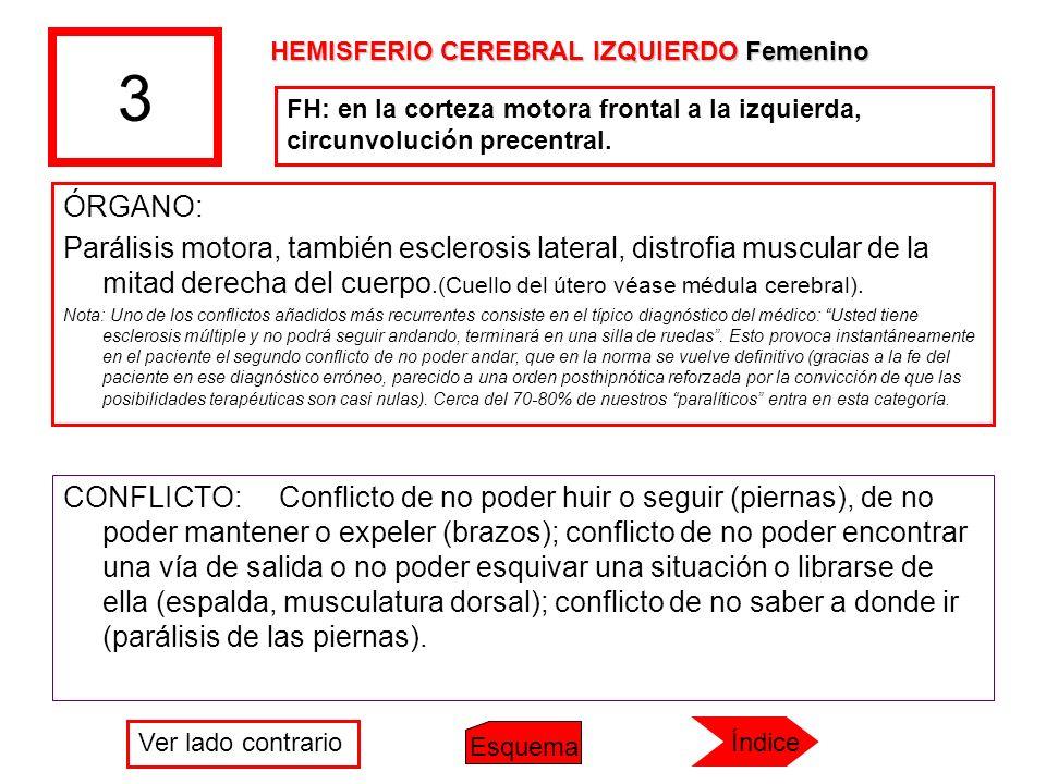 3 ÓRGANO: Parálisis motora, también esclerosis lateral, distrofia muscular de la mitad derecha del cuerpo.(Cuello del útero véase médula cerebral). No