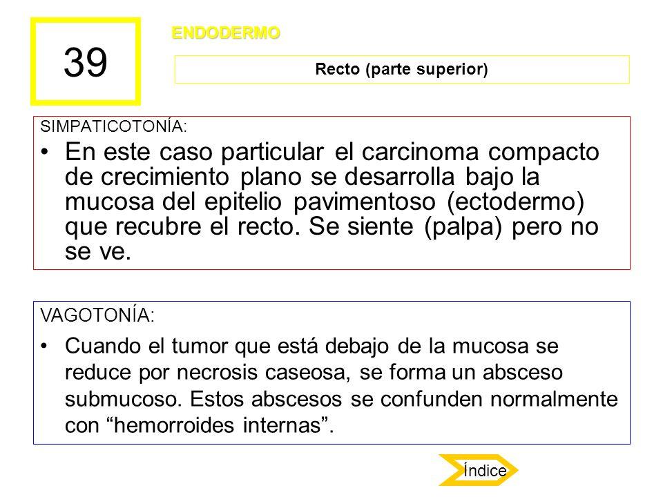 39 SIMPATICOTONÍA: En este caso particular el carcinoma compacto de crecimiento plano se desarrolla bajo la mucosa del epitelio pavimentoso (ectodermo