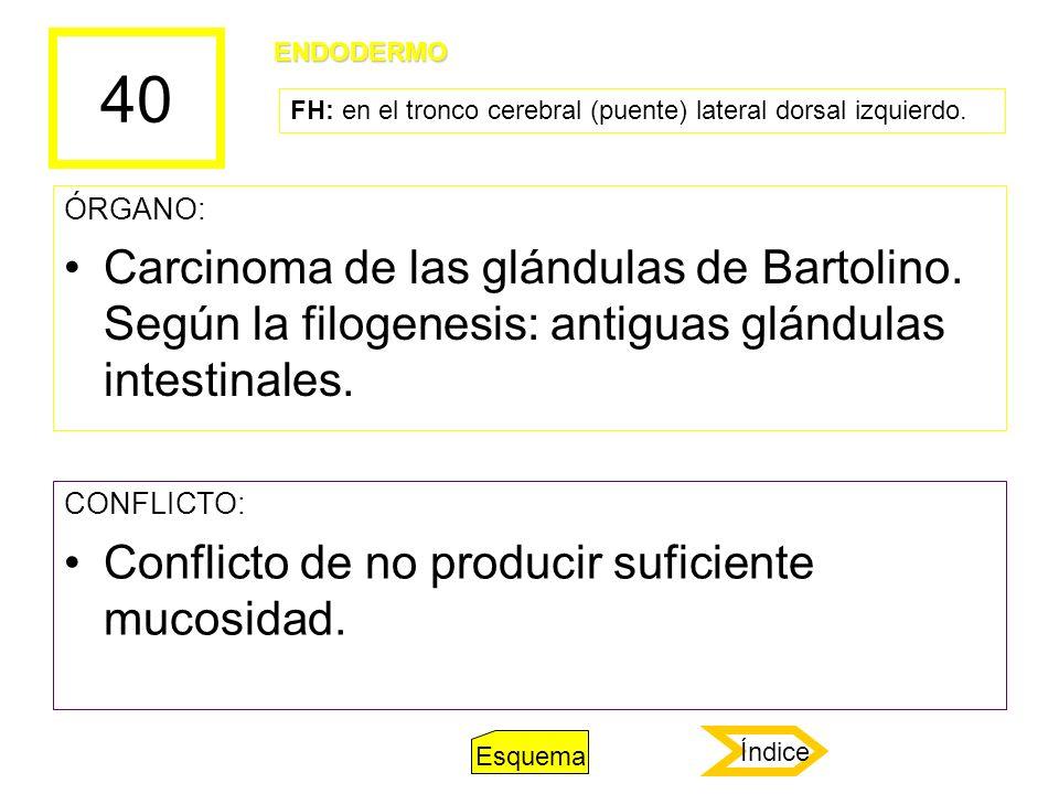 40 ÓRGANO: Carcinoma de las glándulas de Bartolino. Según la filogenesis: antiguas glándulas intestinales. CONFLICTO: Conflicto de no producir suficie