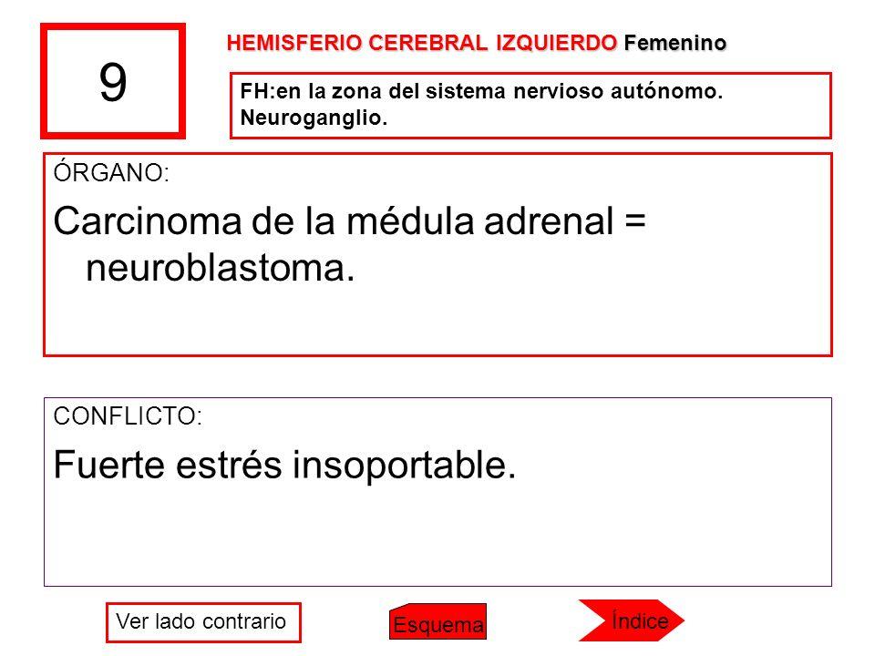9 ÓRGANO: Carcinoma de la médula adrenal = neuroblastoma. CONFLICTO: Fuerte estrés insoportable. FH:en la zona del sistema nervioso autónomo. Neurogan