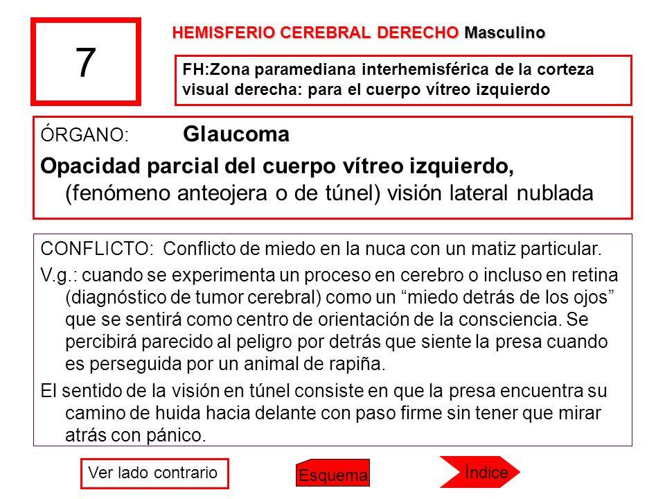 7 ÓRGANO: Glaucoma Opacidad parcial del cuerpo vítreo izquierdo, (fenómeno anteojera o de túnel) visión lateral nublada CONFLICTO: Conflicto de miedo