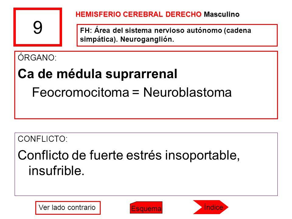 9 ÓRGANO: Ca de médula suprarrenal Feocromocitoma = Neuroblastoma CONFLICTO: Conflicto de fuerte estrés insoportable, insufrible. HEMISFERIO CEREBRAL