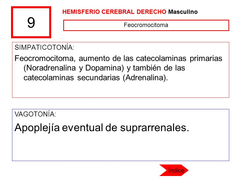 9 SIMPATICOTONÍA: Feocromocitoma, aumento de las catecolaminas primarias (Noradrenalina y Dopamina) y también de las catecolaminas secundarias (Adrena