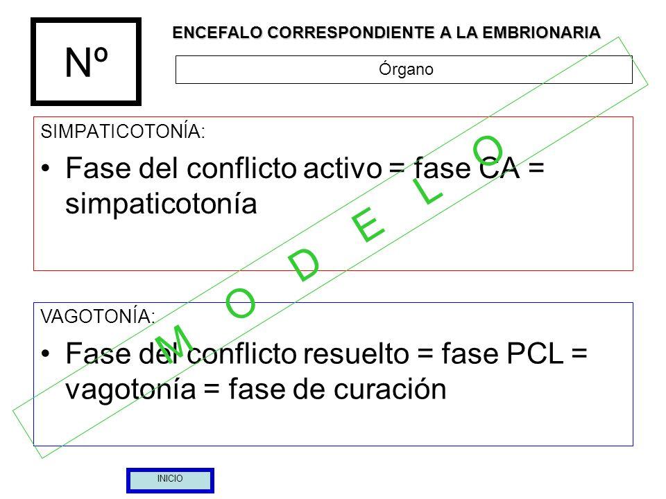 Nº SIMPATICOTONÍA: Fase del conflicto activo = fase CA = simpaticotonía VAGOTONÍA: Fase del conflicto resuelto = fase PCL = vagotonía = fase de curaci