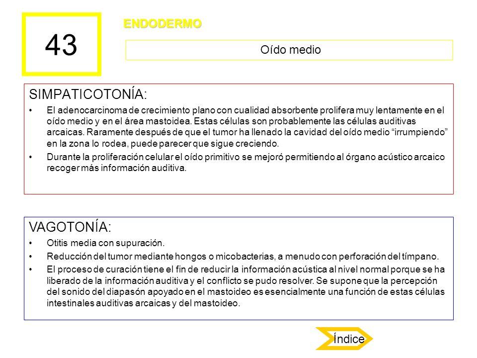 43 SIMPATICOTONÍA: El adenocarcinoma de crecimiento plano con cualidad absorbente prolifera muy lentamente en el oído medio y en el área mastoidea. Es