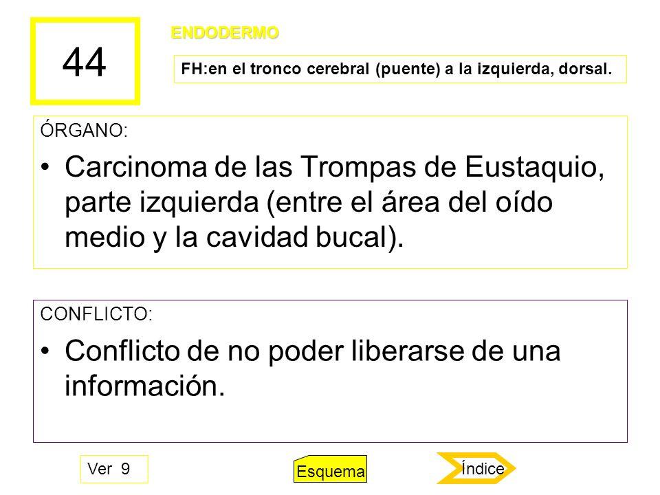 44 ÓRGANO: Carcinoma de las Trompas de Eustaquio, parte izquierda (entre el área del oído medio y la cavidad bucal). CONFLICTO: Conflicto de no poder