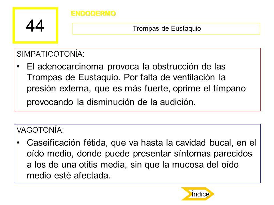 44 SIMPATICOTONÍA: El adenocarcinoma provoca la obstrucción de las Trompas de Eustaquio. Por falta de ventilación la presión externa, que es más fuert