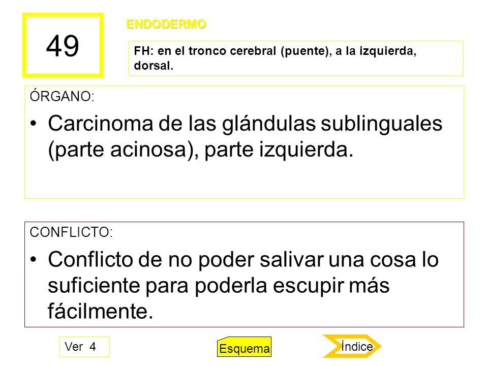49 ÓRGANO: Carcinoma de las glándulas sublinguales (parte acinosa), parte izquierda. CONFLICTO: Conflicto de no poder salivar una cosa lo suficiente p
