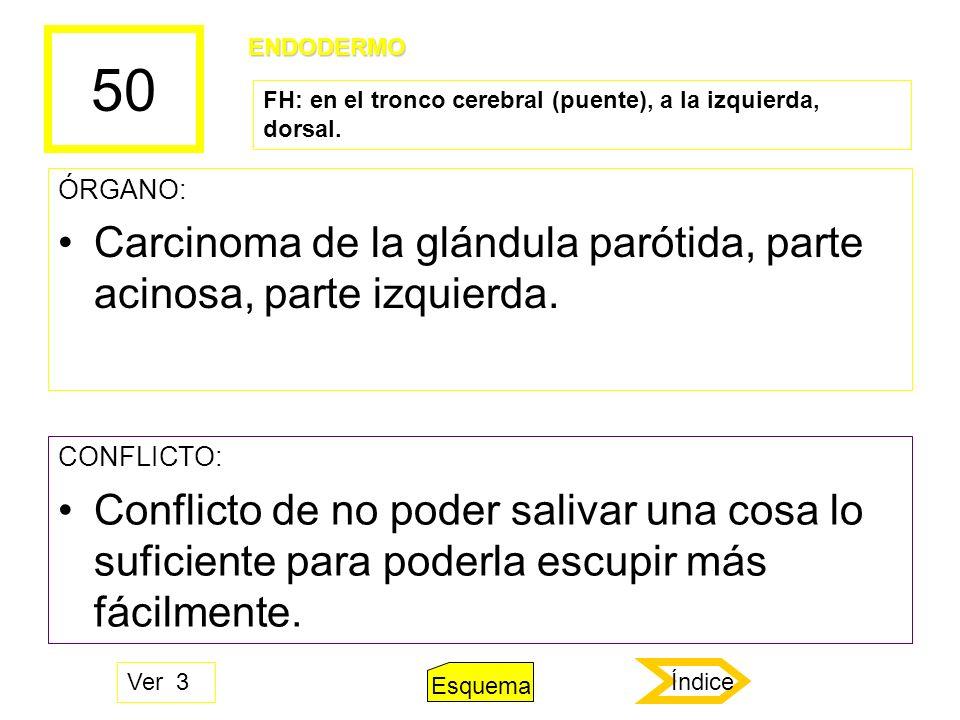 50 ÓRGANO: Carcinoma de la glándula parótida, parte acinosa, parte izquierda. CONFLICTO: Conflicto de no poder salivar una cosa lo suficiente para pod