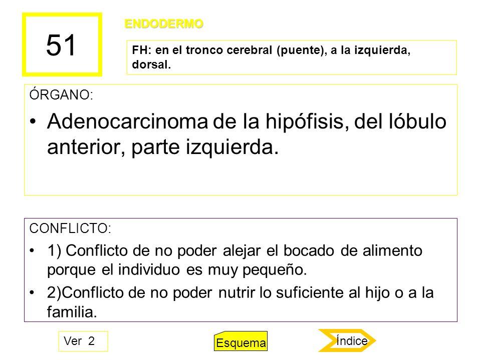 51 ÓRGANO: Adenocarcinoma de la hipófisis, del lóbulo anterior, parte izquierda. CONFLICTO: 1) Conflicto de no poder alejar el bocado de alimento porq