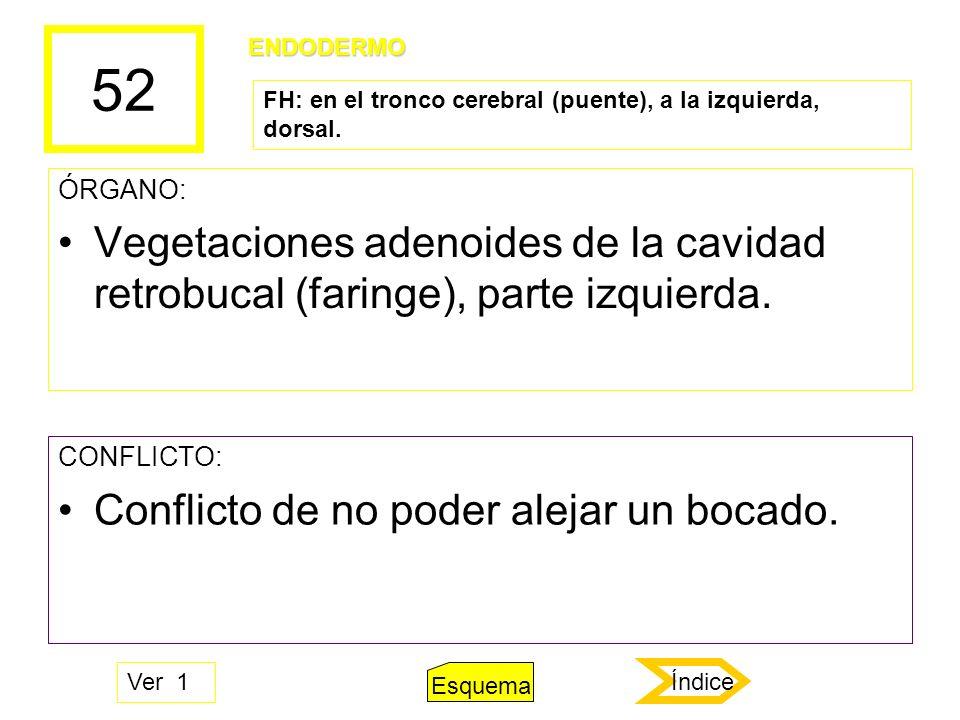 52 ÓRGANO: Vegetaciones adenoides de la cavidad retrobucal (faringe), parte izquierda. CONFLICTO: Conflicto de no poder alejar un bocado. ENDODERMO FH