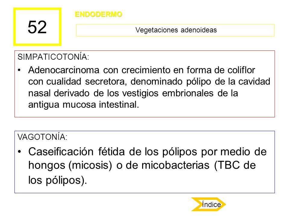 52 SIMPATICOTONÍA: Adenocarcinoma con crecimiento en forma de coliflor con cualidad secretora, denominado pólipo de la cavidad nasal derivado de los v