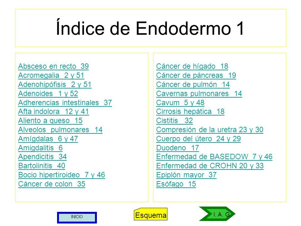 Índice de Endodermo 1 Absceso en recto 39 Acromegalia 2 y 51 Adenohipófisis 2 y 51 Adenoides 1 y 52 Adherencias intestinales 37 Afta indolora 12 y 41