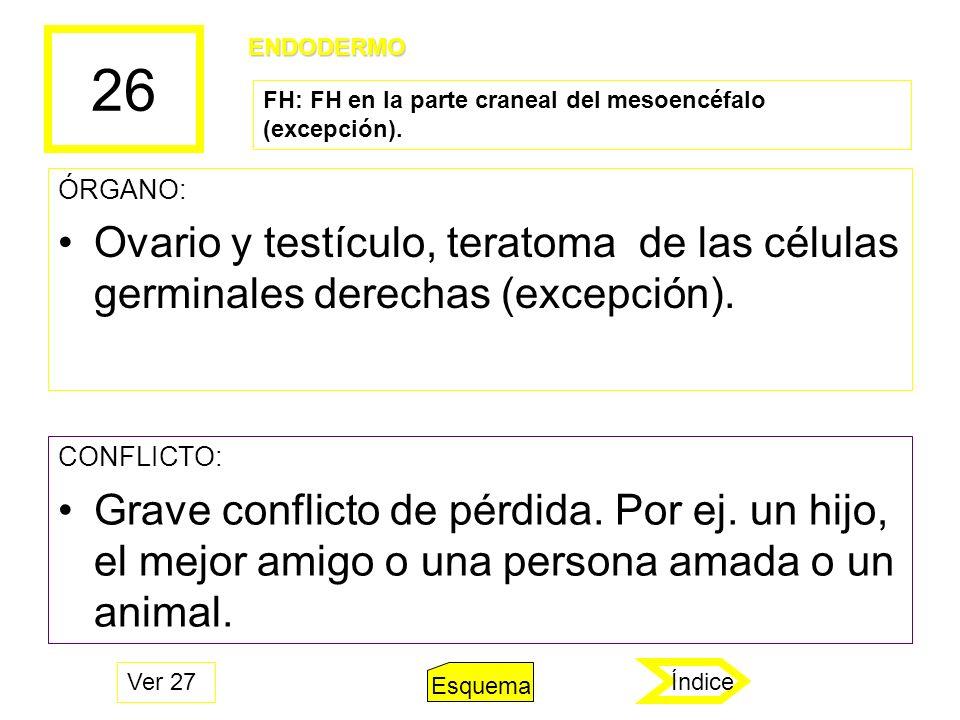 26 ÓRGANO: Ovario y testículo, teratoma de las células germinales derechas (excepción). CONFLICTO: Grave conflicto de pérdida. Por ej. un hijo, el mej