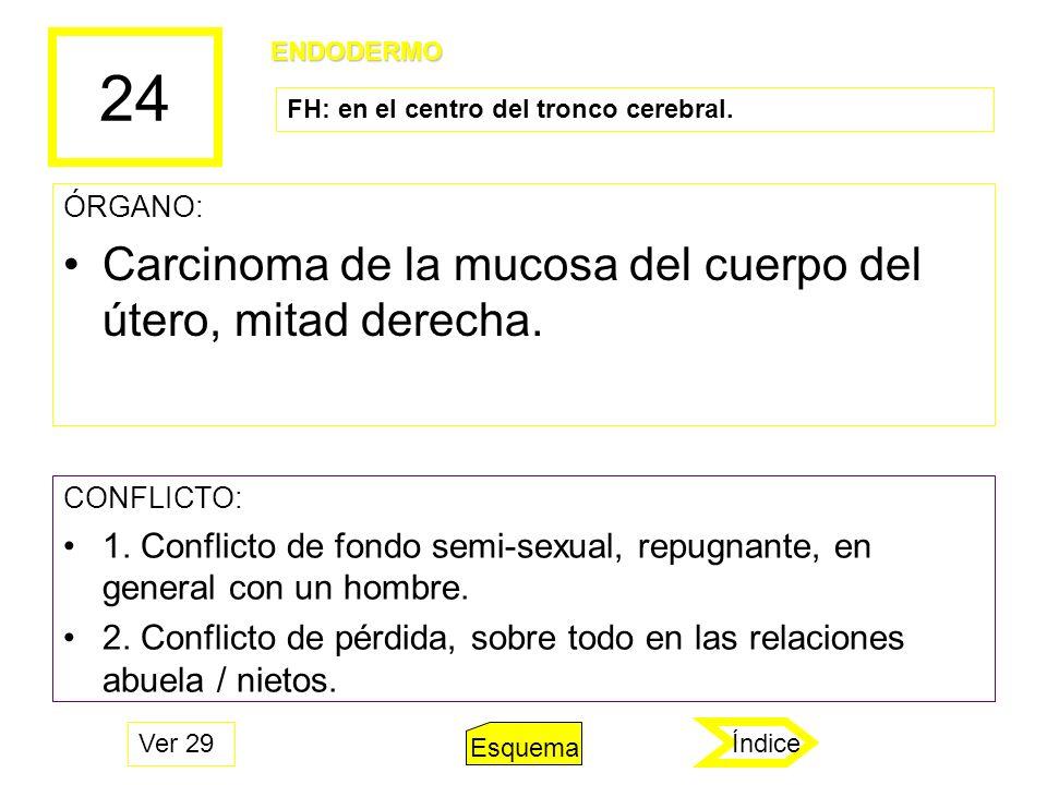 24 ÓRGANO: Carcinoma de la mucosa del cuerpo del útero, mitad derecha. CONFLICTO: 1. Conflicto de fondo semi-sexual, repugnante, en general con un hom