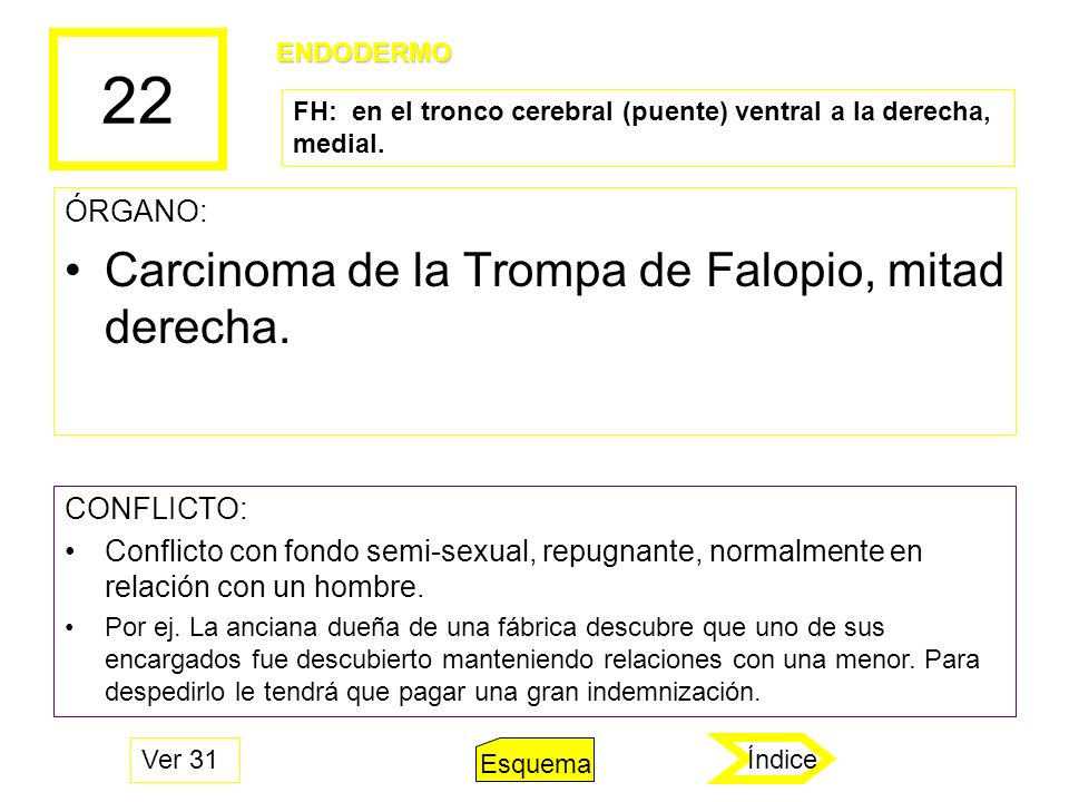 22 ÓRGANO: Carcinoma de la Trompa de Falopio, mitad derecha. CONFLICTO: Conflicto con fondo semi-sexual, repugnante, normalmente en relación con un ho