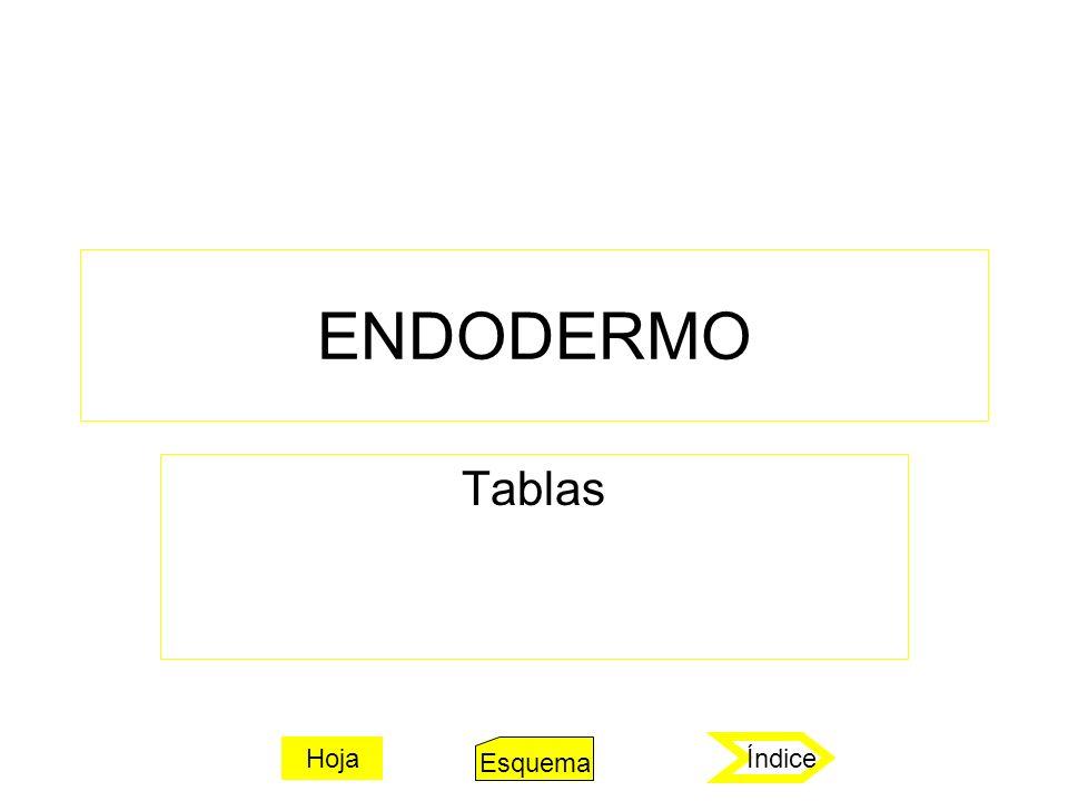 Hoja embrionaria externa = ectodermo (rojo) Formación histológicaFocos de HamerMicrobios a) Cáncer: Carcinoma de la úlcera del epitelio pavimentoso.