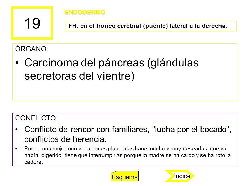 19 ÓRGANO: Carcinoma del páncreas (glándulas secretoras del vientre) CONFLICTO: Conflicto de rencor con familiares, lucha por el bocado, conflictos de