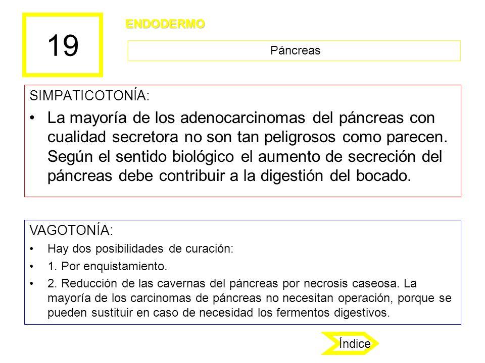 19 SIMPATICOTONÍA: La mayoría de los adenocarcinomas del páncreas con cualidad secretora no son tan peligrosos como parecen. Según el sentido biológic