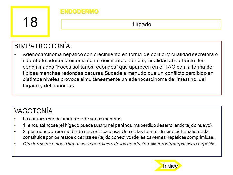 18 SIMPATICOTONÍA: Adenocarcinoma hepático con crecimiento en forma de coliflor y cualidad secretora o sobretodo adenocarcinoma con crecimiento esféri