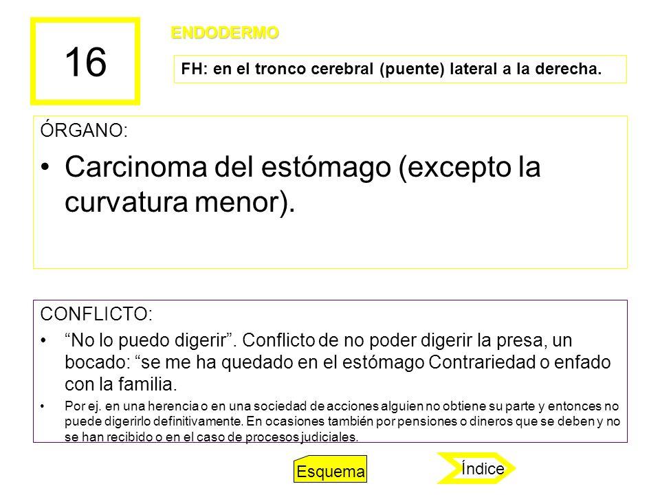 16 ÓRGANO: Carcinoma del estómago (excepto la curvatura menor). CONFLICTO: No lo puedo digerir. Conflicto de no poder digerir la presa, un bocado: se