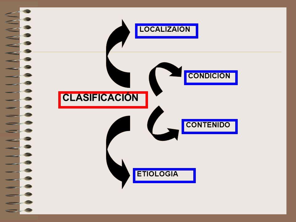 CLASIFICACIÓN LOCALIZAIÓN CONDICIÓN ETIOLOGIA CONTENIDO