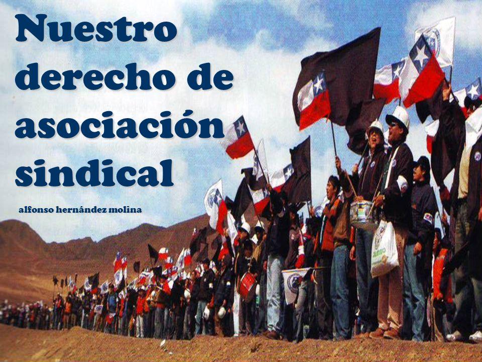 El sindicalismo consciente y activo que destacó en Chile logró acceso de las organizaciones a recibir parte de las utilidades empresariales (artículos 405 y ss.