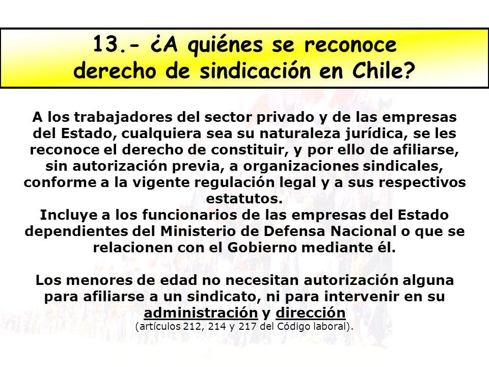 13.- ¿A quiénes se reconoce derecho de sindicación en Chile? A los trabajadores del sector privado y de las empresas del Estado, cualquiera sea su nat