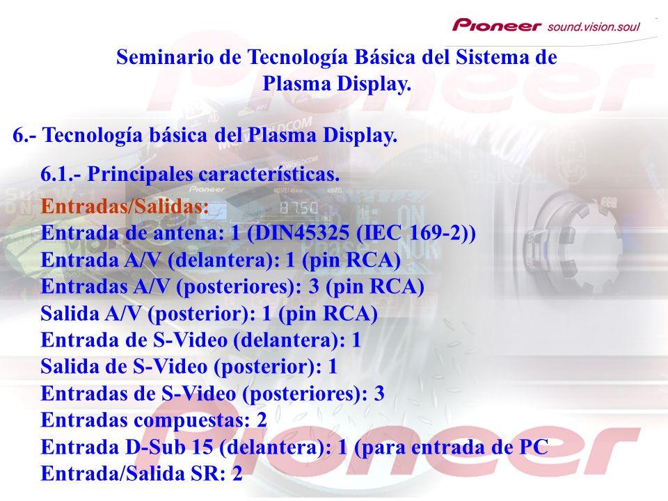 Seminario de Tecnología Básica del Sistema de Plasma Display. 6.- Tecnología básica del Plasma Display. 6.1.- Principales características. Entradas/Sa