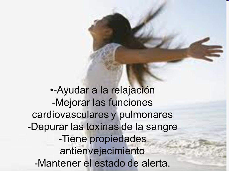 -Ayudar a la relajación -Mejorar las funciones cardiovasculares y pulmonares -Depurar las toxinas de la sangre -Tiene propiedades antienvejecimiento -