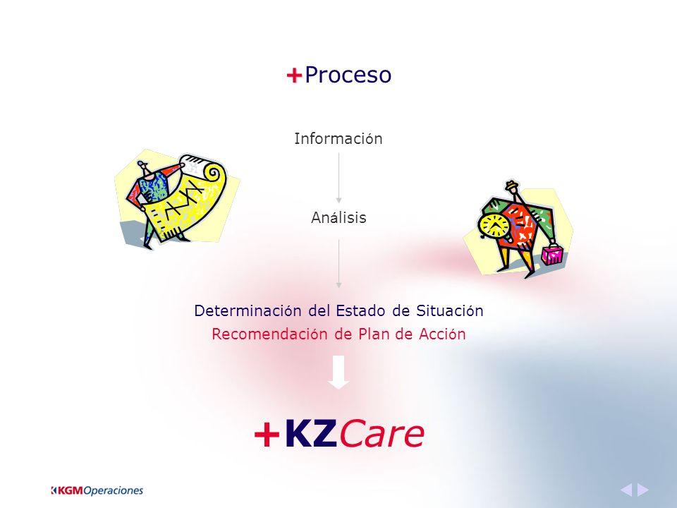 + +Proceso Informaci ó n An á lisis Determinaci ó n del Estado de Situaci ó n Recomendaci ó n de Plan de Acci ó n +KZCare