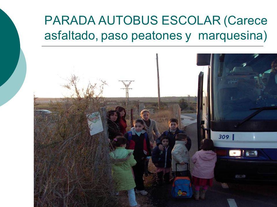 PARADA AUTOBUS ESCOLAR (Carece asfaltado, paso peatones y marquesina)