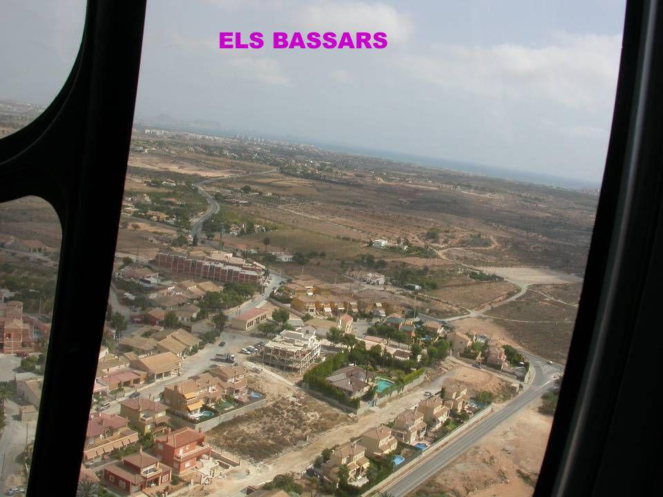 ELS BASSARS
