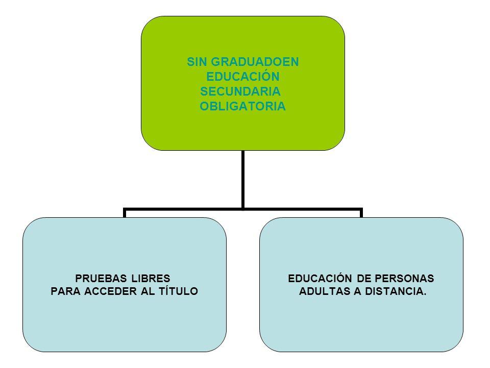 CON GRADUADO EN EDUCACIÓN SECUNDARIA OBLIGATORIA OTRAS ENSEÑANZAS DE IDIOMAS ENSEÑANZAS DEPORTIVAS ENSEÑANZAS ARTÍSTICAS BACHILLERATO SELECTIVIDAD UNIVERSIDAD FORMACIÓN PROFESIONAL DE GRADO MEDIO PRUEBA DE ACCESO FORMACIÓN PROFESIONAL DE GRADO SUPERIOR
