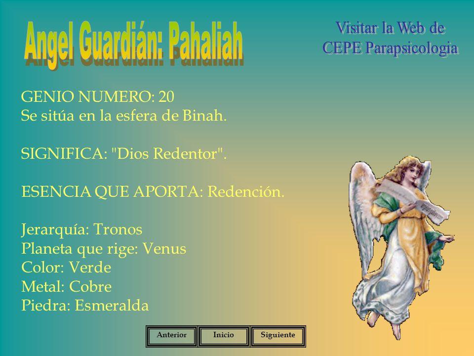 GENIO NUMERO: 20 Se sitúa en la esfera de Binah.SIGNIFICA: Dios Redentor .