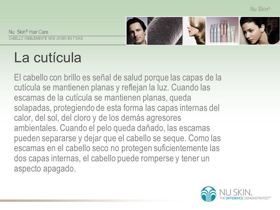 Nu Skin ® Hair Care CABELLO VISIBLEMENTE MÁS JOVEN EN 7 DÍAS Nu Skin ® La cutícula El cabello con brillo es señal de salud porque las capas de la cutí