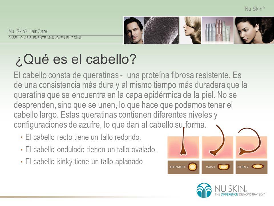 Nu Skin ® Hair Care CABELLO VISIBLEMENTE MÁS JOVEN EN 7 DÍAS Nu Skin ® ¿Qué es el cabello? El cabello consta de queratinas - una proteína fibrosa resi