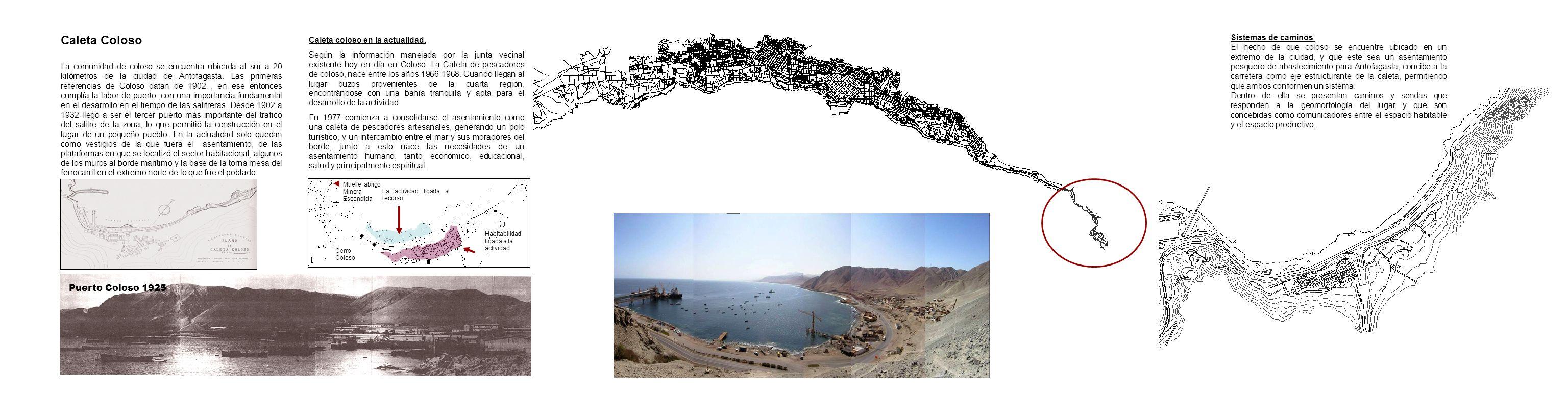 Puerto Coloso 1925 Caleta Coloso La comunidad de coloso se encuentra ubicada al sur a 20 kilómetros de la ciudad de Antofagasta. Las primeras referenc