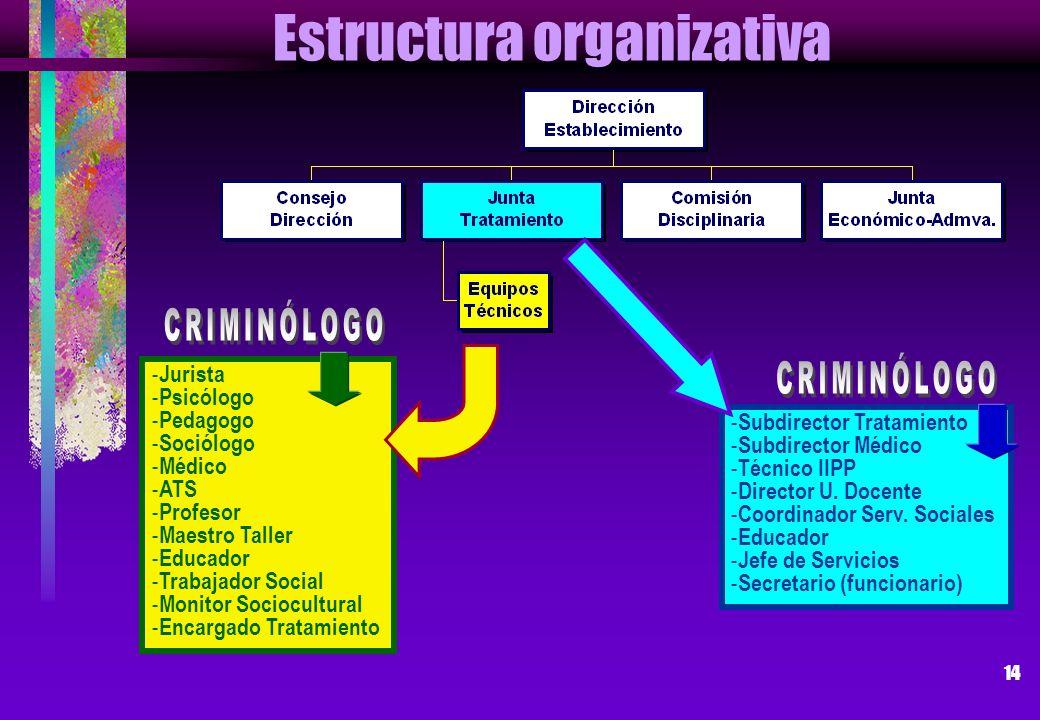 14 Estructura organizativa - Jurista - Psicólogo - Pedagogo - Sociólogo - Médico - ATS - Profesor - Maestro Taller - Educador - Trabajador Social - Mo