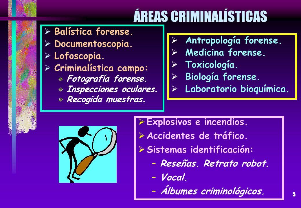 5 ÁREAS CRIMINALÍSTICAS Balística forense. Documentoscopia. Lofoscopia. Criminalística campo: Fotografía forense. Inspecciones oculares. Recogida mues
