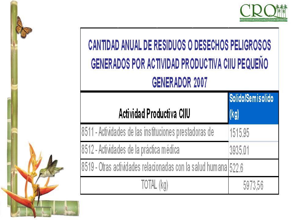 CANTIDAD ANUAL DE RESIDUOS O DESECHOS PELIGROSOS GENERADOS POR ACTIVIDAD PRODUCTIVA CIIU SOLIDO PEQUEÑO GENERADOR 2007