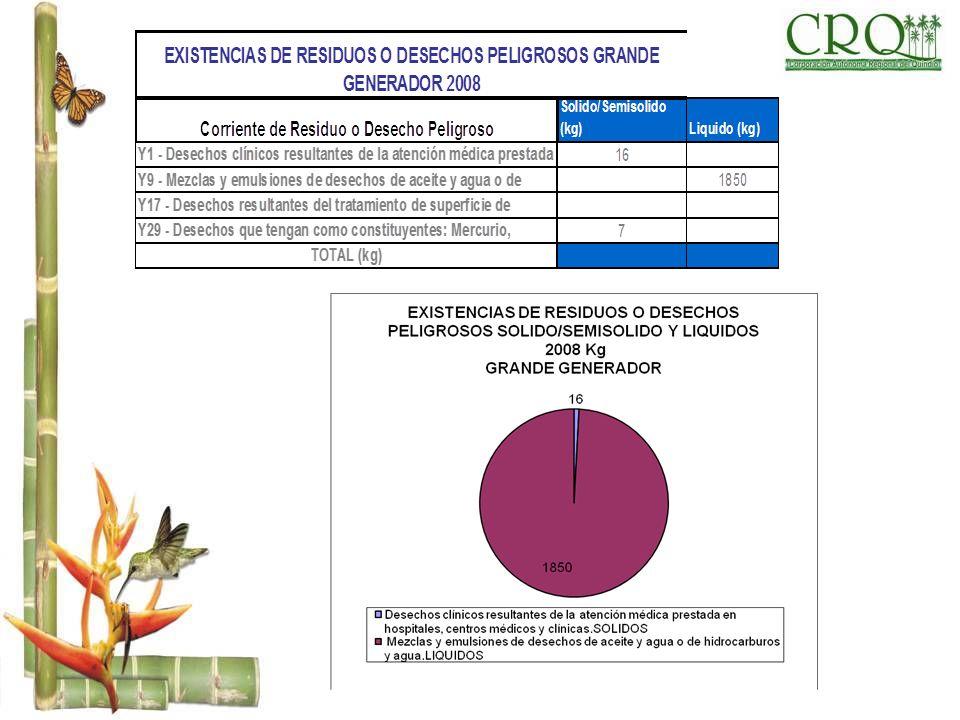 EXISTENCIAS DE RESIDUOS O DESECHOS PELIGROSOS GRANDE GENERADOR 2008 Corriente de Residuo o Desecho Peligroso Solido/Semisolido (kg)Liquido (kg) Y1 - D