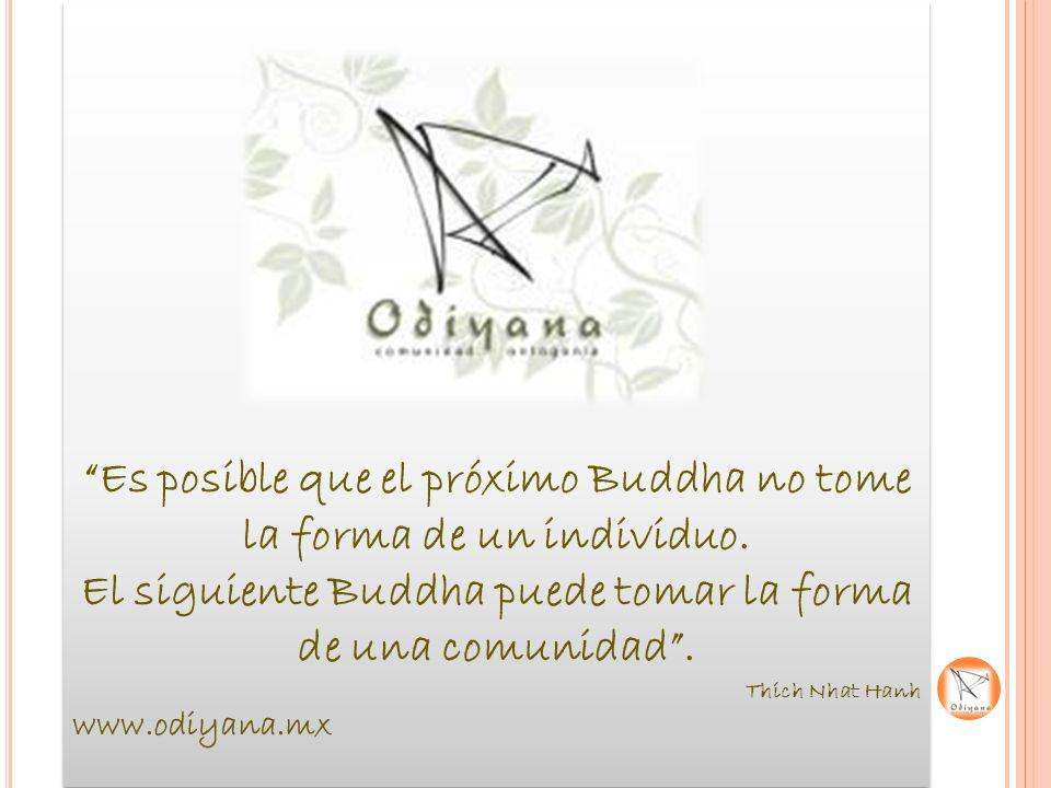 Es posible que el próximo Buddha no tome la forma de un individuo. El siguiente Buddha puede tomar la forma de una comunidad. Thich Nhat Hanh www.odiy