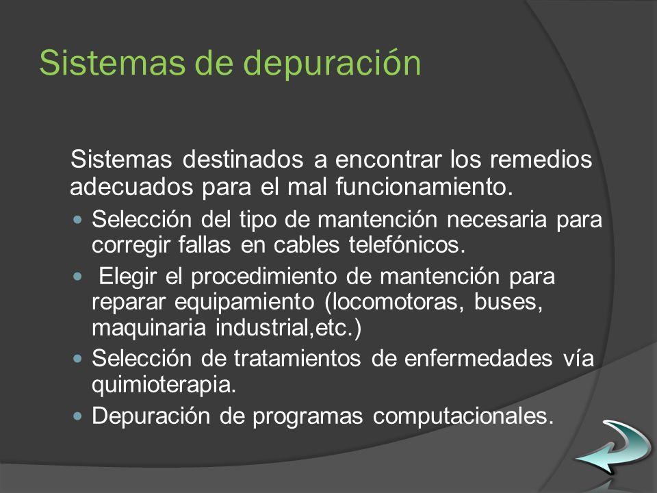 Sistemas de depuración Sistemas destinados a encontrar los remedios adecuados para el mal funcionamiento.