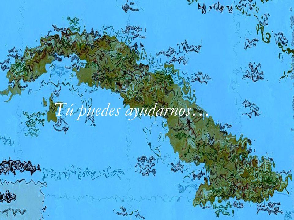 Hombre Nuevo Tierra Nueva España-Cuba Ayuda humanitaria Apadrinamientos Reparación de casas Integración de menores Ayuda a ancianos Microcréditos Colaboradores y beneficiados comparten distintas ideologías.